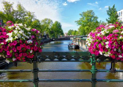 HOLANDIA: Najpiękniejszy Wiosenny Ogród Świata